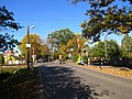 Autumn in melluzi Darzu street - panoramio.jpg