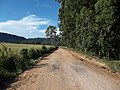 Avenida Dezessete de Dezembro - Palma - Santa Maria, foto 11 (sentido S-N).jpg - panoramio.jpg