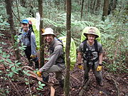 BSAR searchers in the field at Mount Dom Dom