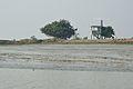 BSF Watchtower - Riverbank Ichamati - Hasnabad - North 24 Parganas 2015-01-13 4478.JPG