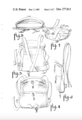 Baby Carrier Moore Patent.png