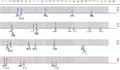 Badanie ojcostwa - przykładowy profil genetyczny, wykonany na podstawie analizy układów STR.png