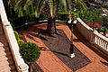 Baha'i Garden, Haifa (3756370163).jpg
