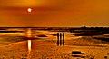 Balachadi beach, Jamnagar.jpg