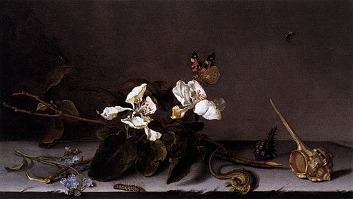 Balthasar van der Ast - Still Life with Apple Blossoms - WGA1036