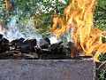 Barbeque-Fire 22646-480x360 (4792082844).jpg