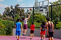 Basket ball back yard.jpg