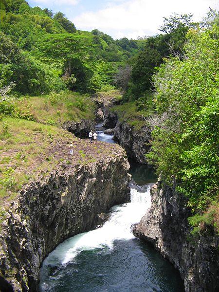 Que voir à l'île de la Reunion Bassin la Paix à Bras Panon