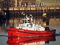 Beagle (tugboat, 2018) IMO 9816359, Calandkanaal pic1.jpg