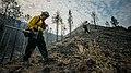 Beaver Creek Fire 2013 Idaho 11.jpg