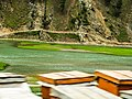 Beehives seen at widening of Kunhar River at Jalkhand.jpg