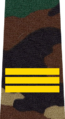 Belarus MIA—15 Sergeant rank insignia (Camouflage).png