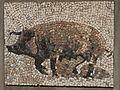 Belgrade zoo mosaic0020.JPG