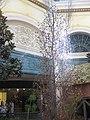 Bellagio garden IMG 3819.jpg