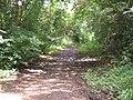 Belvidere Road, Exeter - geograph.org.uk - 1403128.jpg