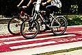 Bicicletas passando na ciclovia.jpg