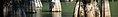 Big Thicket National Preserve banner Bald cypress trees.jpg