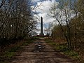 Blackdown Hills , The Wellington Monument - geograph.org.uk - 1242973.jpg