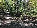Blendon Woods Metro Park October 2018 23.jpg