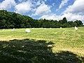 Blick auf das Naturschutzgebiet Finkenberg-Lerchenberg - panoramio (1).jpg