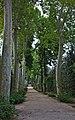 Boboli Gardens - panoramio.jpg