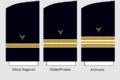 Bocamangas Cuerpo de Oficinas de La Armada (extinguido).png