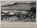 Boer War; English and French ambulance convoys crossing Tran Wellcome V0015521.jpg