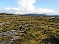 Bog and rocks - geograph.org.uk - 1435516.jpg