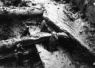 Wittmoor bog trackway - Image: Bohlenweg Wittmoor hist Foto detail