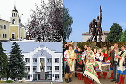 Borzna collage.jpg