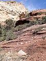 Boynton Canyon Trail, Sedona, Arizona - panoramio (85).jpg