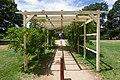 Braidwood NSW 2622, Australia - panoramio (24).jpg