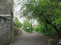 Brandon Hill Nature Park - geograph.org.uk - 1249504.jpg