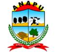 Brasao Anapu.png