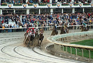 Breeders Cup Classic American Thoroughbred horse race