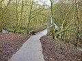 Bridge in Vault Glen - geograph.org.uk - 1598083.jpg