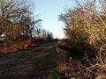 Bridge over Land Drain at Ings Lane, Arksey Ings, Bentley, South Yorkshire - geograph.org.uk - 322016.jpg