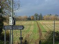 Bridleway, Ruscombe - geograph.org.uk - 1048350.jpg