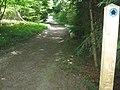 Bridleway in Badgin Wood - geograph.org.uk - 1369975.jpg