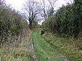 Bridleway near Upton - geograph.org.uk - 1584232.jpg