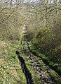 Bridleway on Hotchley Hill - geograph.org.uk - 748144.jpg
