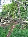 Bridleway through trees, Llwyngwril - geograph.org.uk - 1312686.jpg