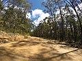 Brooman NSW 2538, Australia - panoramio (128).jpg