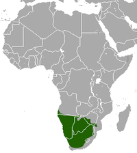 Brown Hyaena area.png