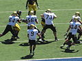 Buffaloes on offense at Colorado at Cal 2010-09-11 42.JPG