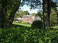 Buildings through the trees - geograph.org.uk - 425442.jpg