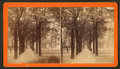 Bull Street, Savannah, Ga, by Havens, O. Pierre, 1838-1912.png