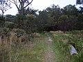 Burgh Track - panoramio (19).jpg