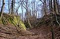 Burgruine-Hattstein-Halsgraben-B-19-JR-2004-03-28.jpg
