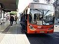 Bus del Transantiago.jpg